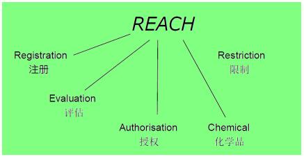 �W盟REACH�y�